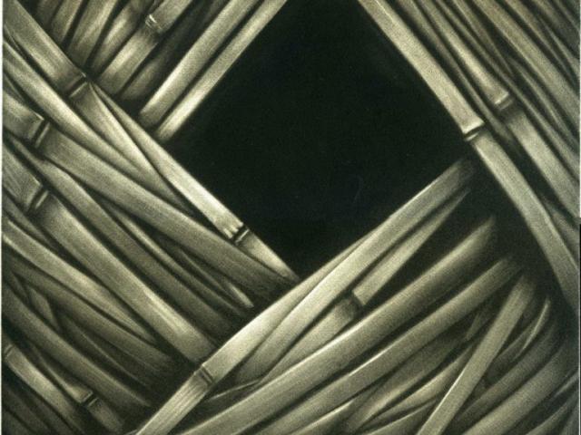 bambous - Manière noire