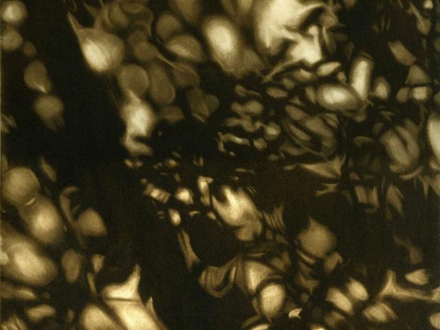 danse des ombres