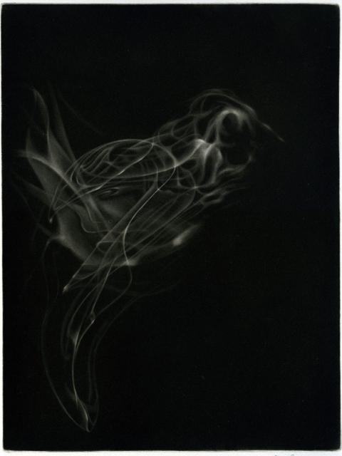 oiseau fumé - Manière noire