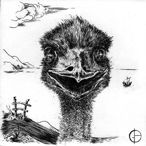Emeu Burin 10 x 10 cm