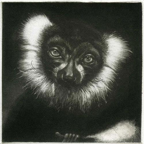 Lulu-le-lemurien manière noire 10 x 10 cm